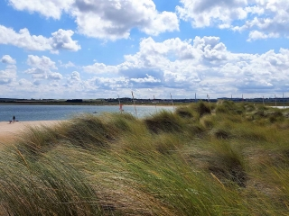 Norfolk's very own Island- Scolt Head
